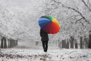 rainbowumbrellaonblackandwhitepath