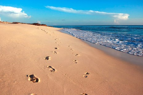 635752785995152488-2003363823_Footprints_in_the_sand