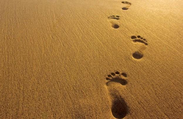 footsteps-660-jpg1-624x409