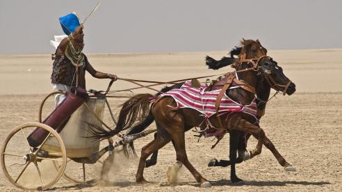 pharaoh-chariot-merl