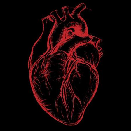 black-and-red-heart-illustration